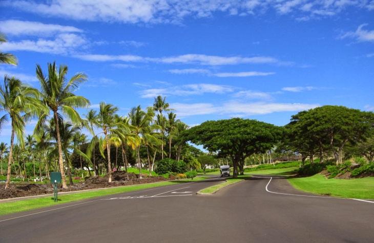 07289-hawaii_45