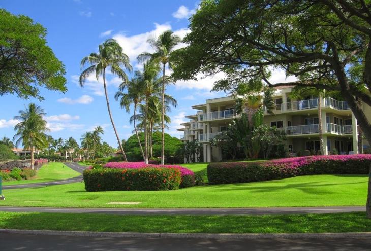 6d161-hawaii_42
